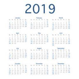2019 Calendar Year Simple Calendar Layout For 2019 Year Vector Illustration